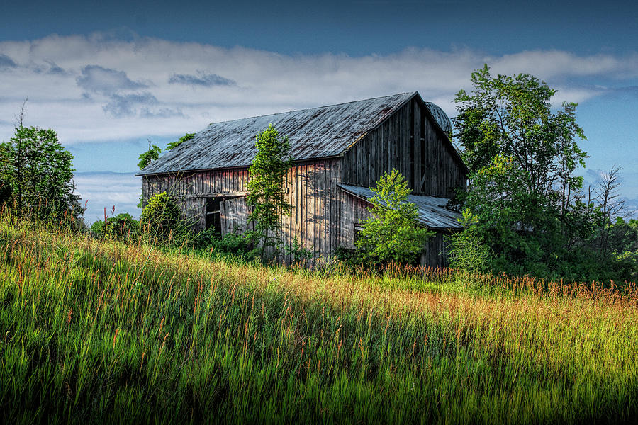 Abandoned Barn on a Farm in the Early Morning Sunlight by Randall Nyhof
