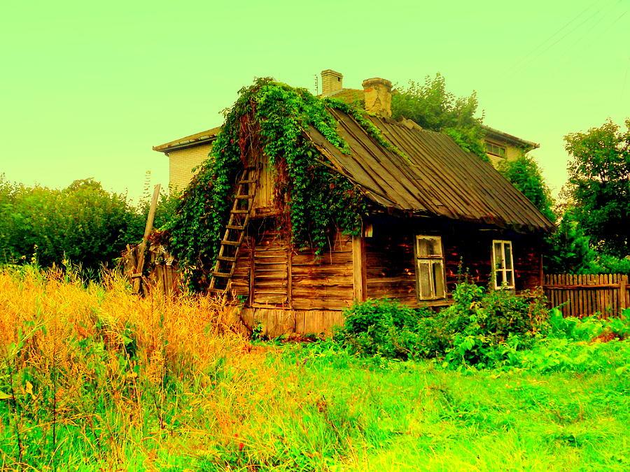 Abandoned Nest by Henryk Gorecki