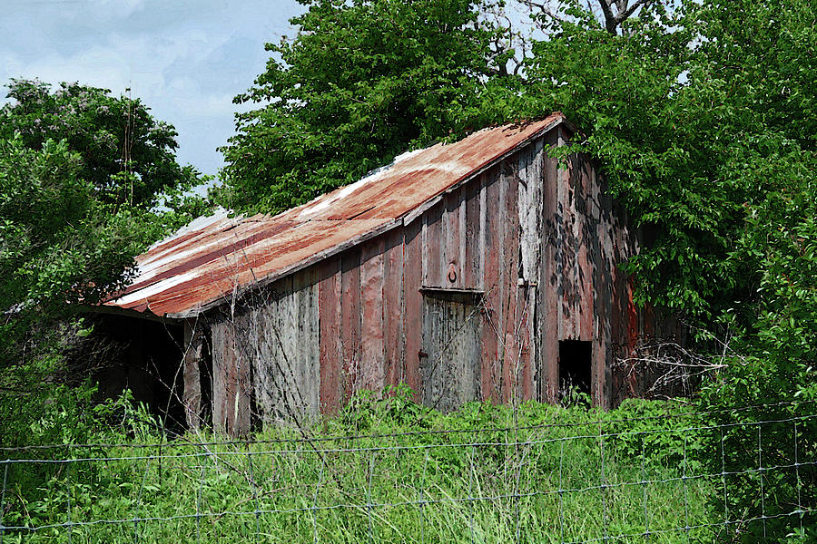 Abandoned Old Barn in Texas Hill Country  by Connie Fox