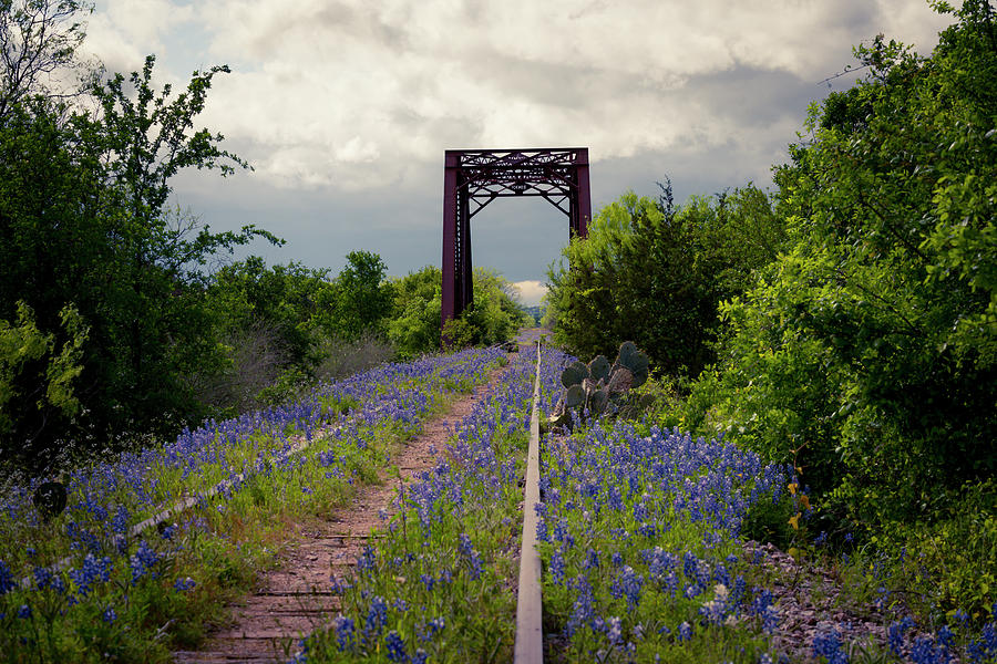 Abandoned Tracks by David Morefield