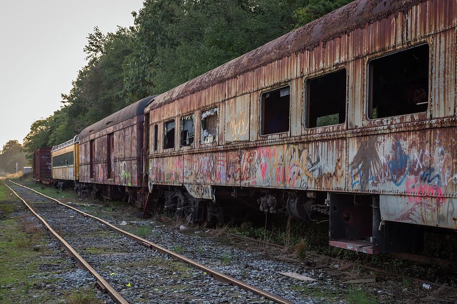 Abandoned Train Cars Photograph
