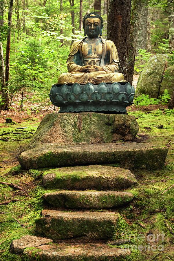 Abby Aldrich Rockefeller Garden - Bronze Buddha by Anita Pollak