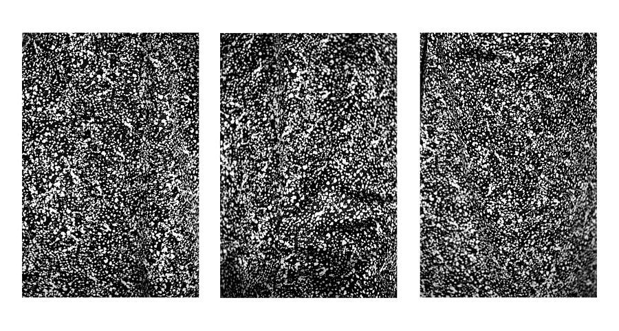 Galaxy Triptych  by Marilyn Hunt
