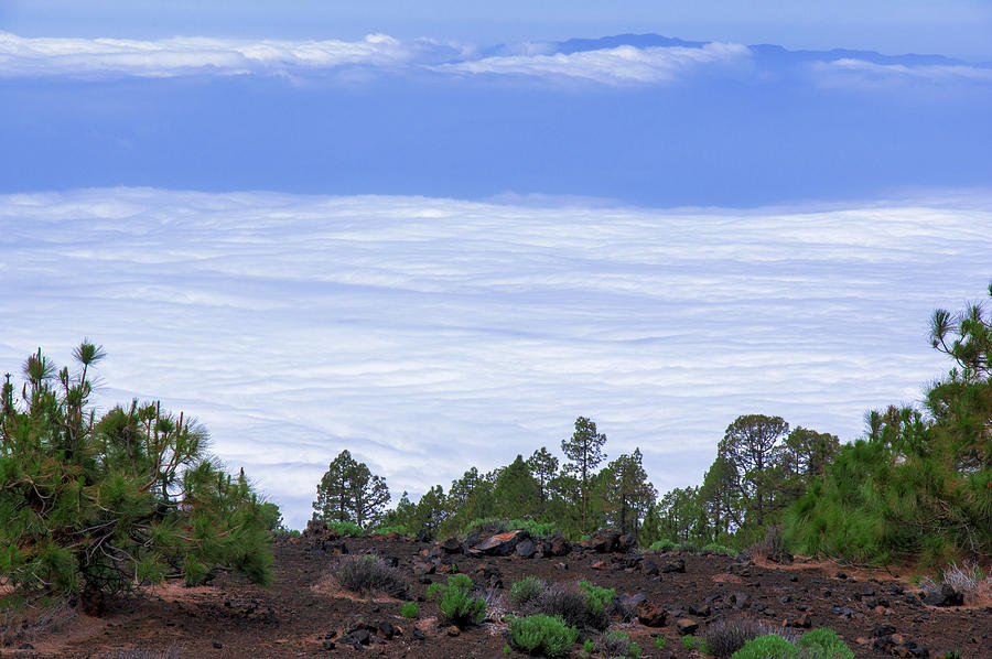 Above the Clouds in the Teide National Park by Sun Travels