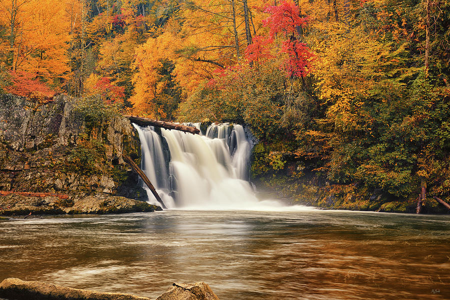Abrams Falls Photograph - Abrams Falls Autumn by Greg Norrell