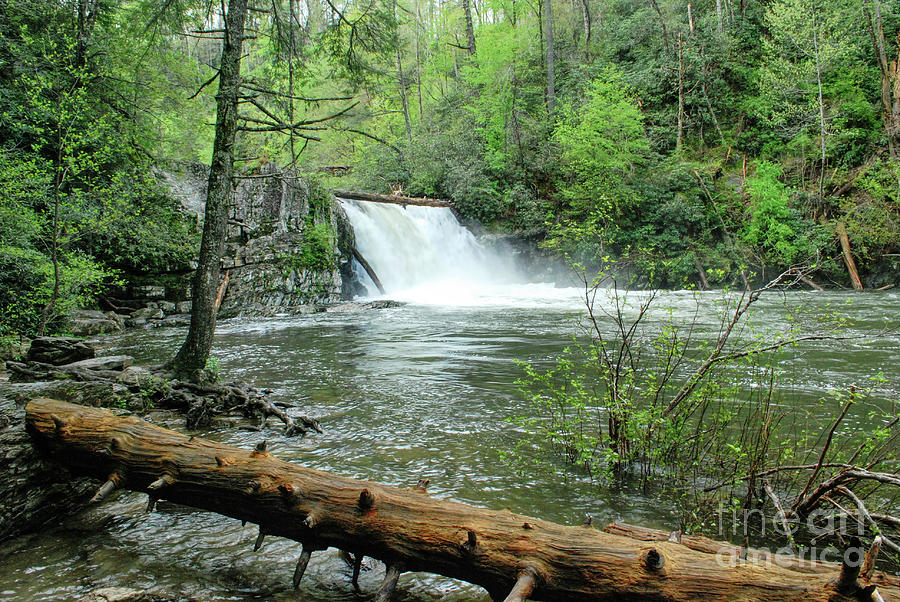 Abrams Falls by Phil Perkins