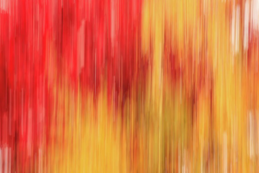 Abstract Autumn in Yellow and Red - vertical motion  by Cristina Stefan