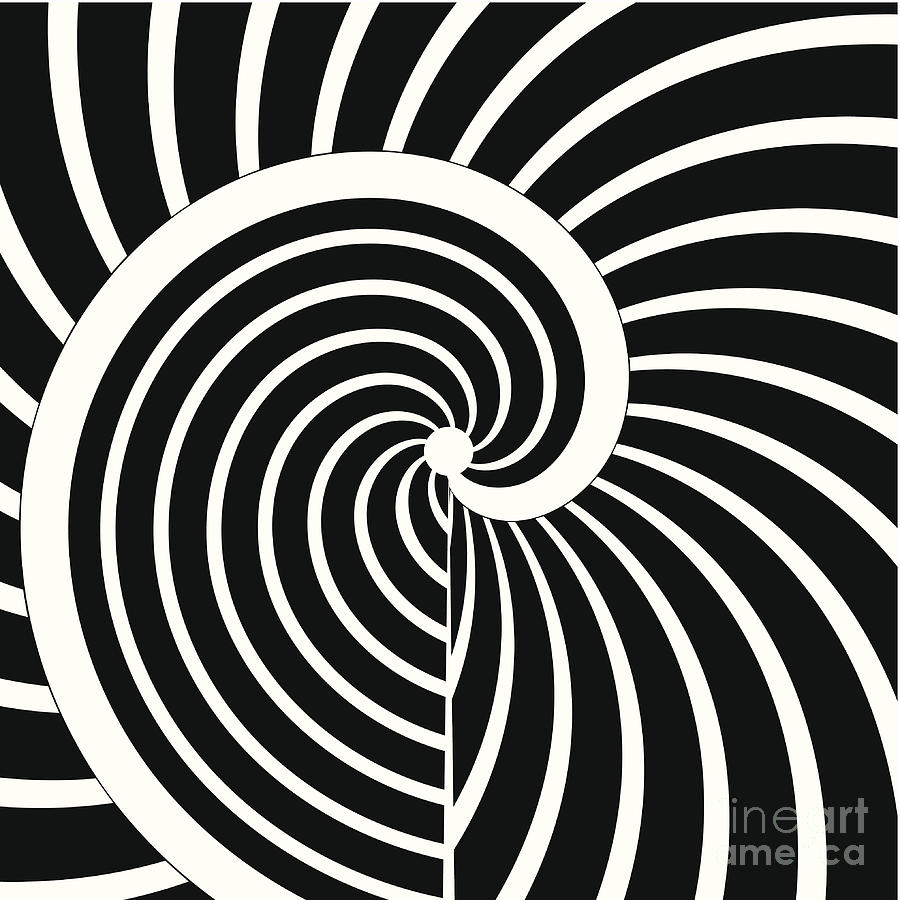 Abstract Black And White Curve Stripe Digital Art by Shuoshu