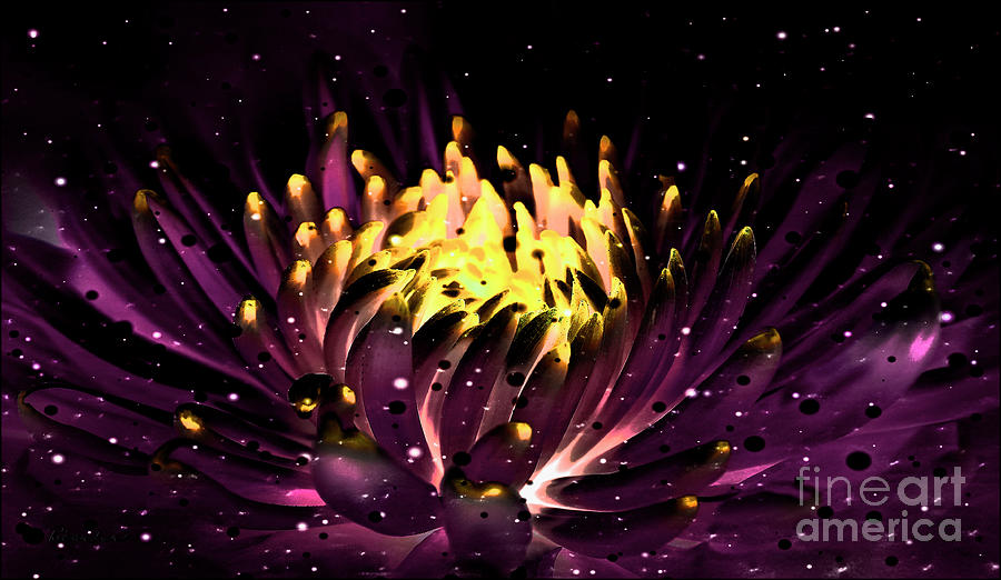 Abstract Digital Dahlia Floral Cosmos 891 by Ricardos Creations