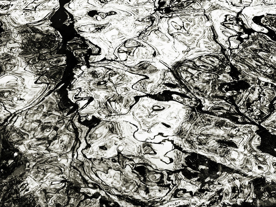 Abstract Expressionism in Nature by Marilyn Hunt