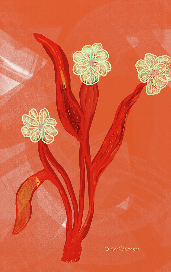 Abstract Flowers on Coral Background by Kae Cheatham