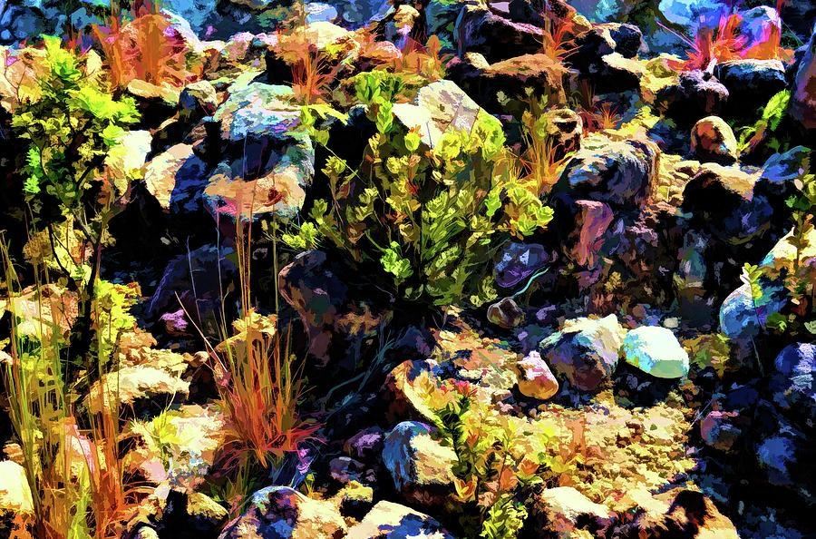 Abstract Nature 45 Photograph