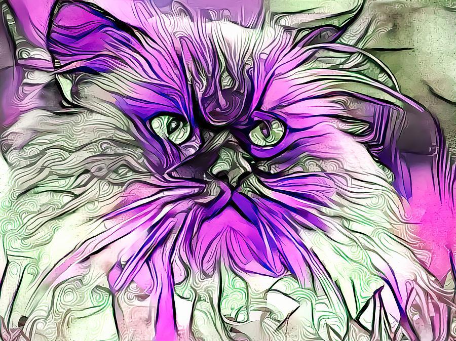 Abstract Purple Himmy Cat Digital Art
