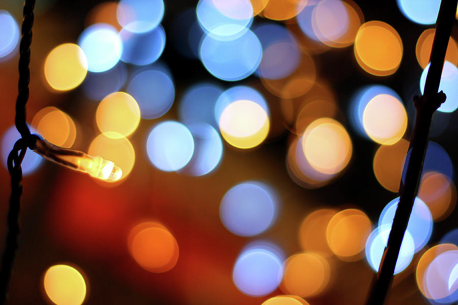 Abstract Spotted Color Pattern Dot Of Photograph by Hidehiro Kigawa
