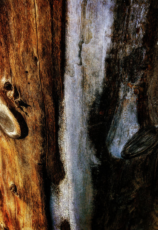 Abstract Wooden Post by Tikvah's Hope