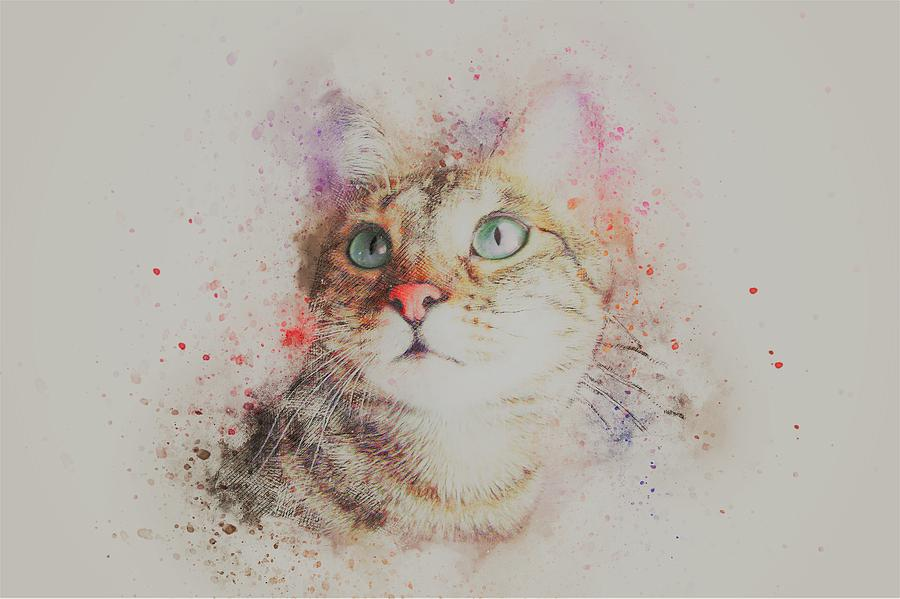 Cat Painting - Abyssinian Cat by ArtMarketJapan