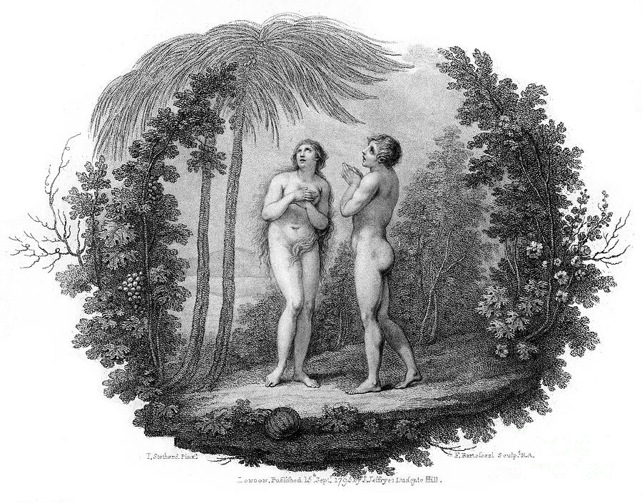 Adam And Eve, 1796.artist Francesco Drawing by Print Collector