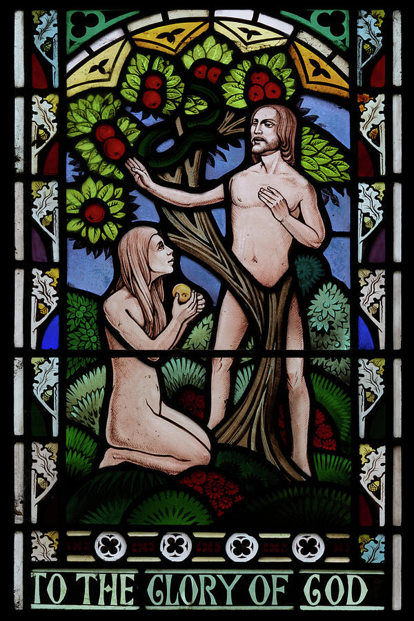 Adam Photograph - Adam And Eve by Steev Stamford