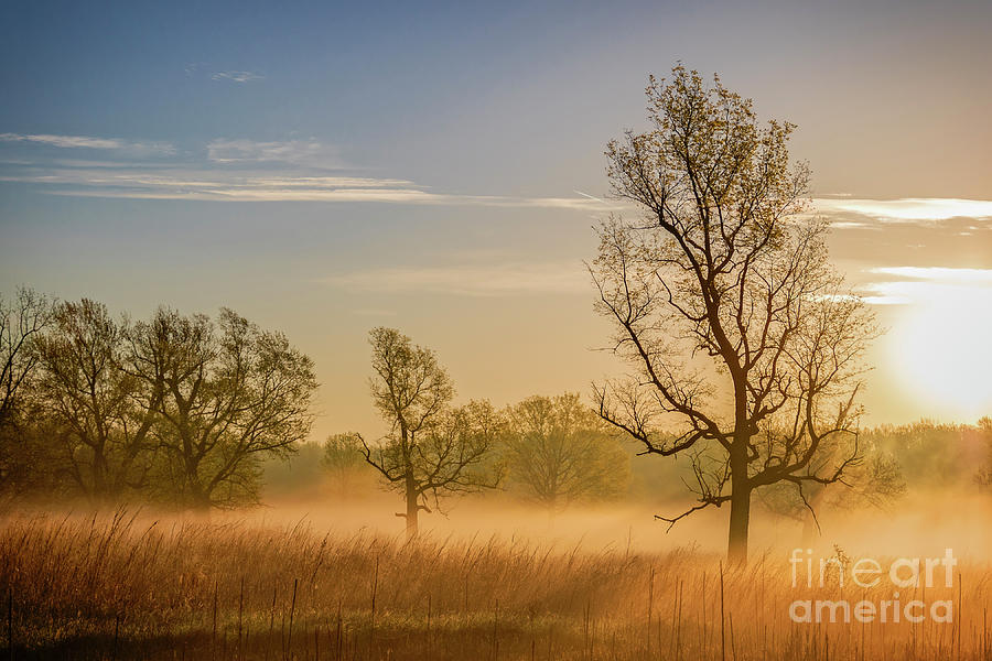 Adams Daybreak by Michael Greiner