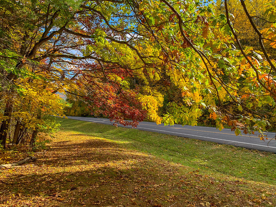 Adirondack Highway by Kendall McKernon