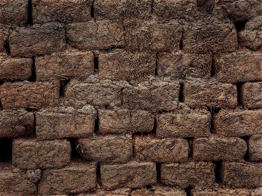Adobe Bricks by Western Light Graphics