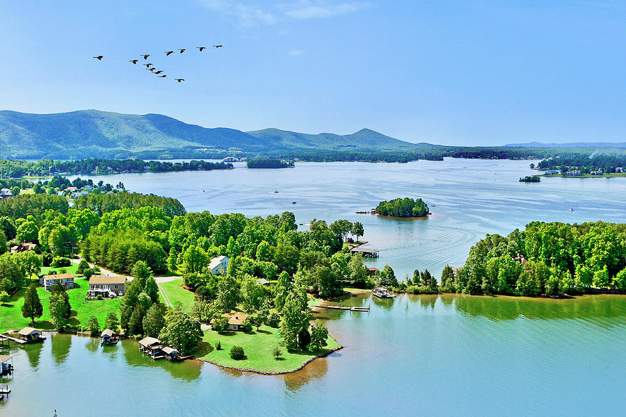 Aerial Geese, Smith Mountain Lake by The American Shutterbug Society