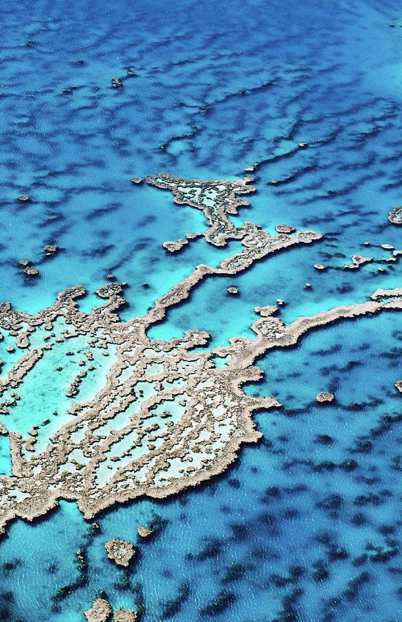 Aerial Of Hardy Reef, Near Whitsunday Photograph by Holger Leue