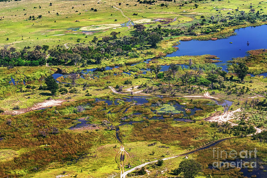 Aerial view at Okavango Delta  by Marek Poplawski