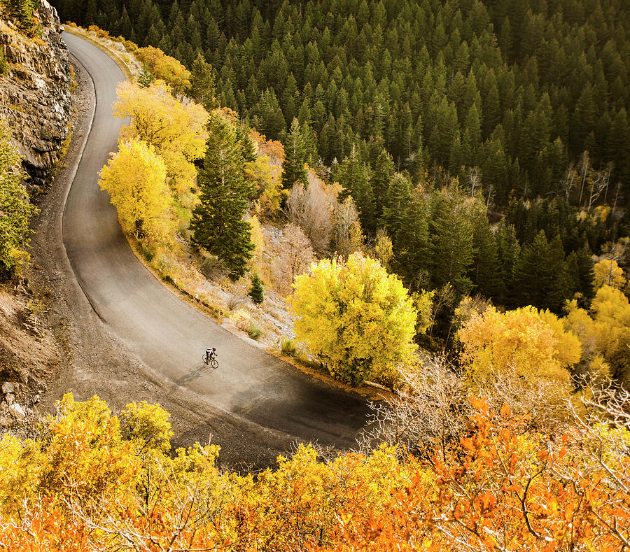 Aerial View Of Bicyclist On Rural Road Photograph by Blend Images - Mike Kemp
