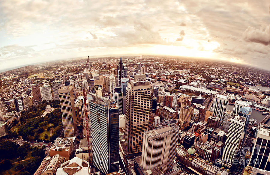 Harbour Photograph - Aerial View Of Downtown Sydney At by Andrey Bayda