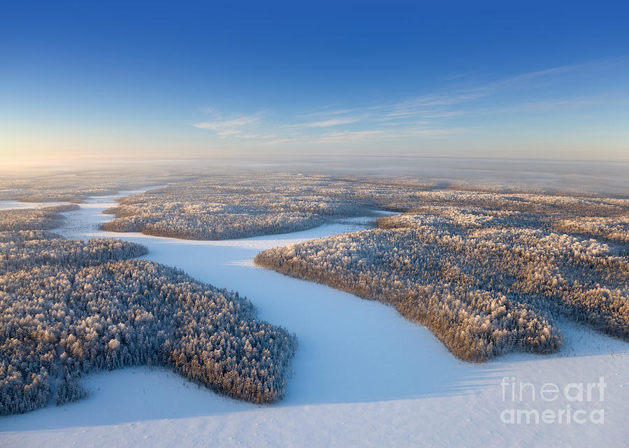 Forest Photograph - Aerial View Of Forest Plain In Time Of by Vladimir Melnikov