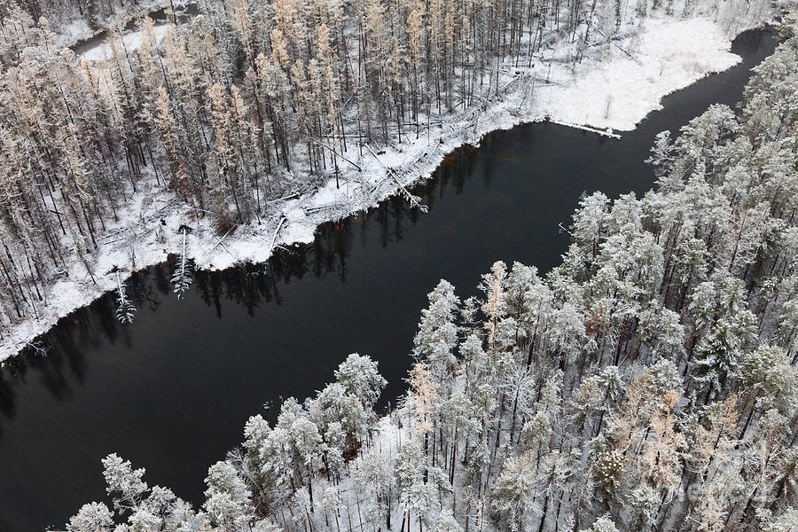 Forest Photograph - Aerial View Of Forest River In Cold by Vladimir Melnikov