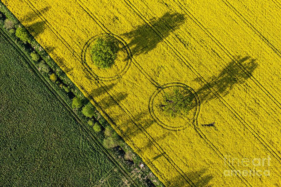 Plane Photograph - Aerial View Of Harvest Fields In Poland by Mariusz Szczygiel