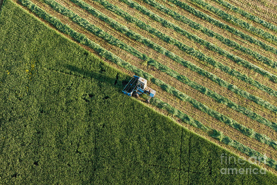 Plane Photograph - Aerial View Of Harvest Fields With by Mariusz Szczygiel