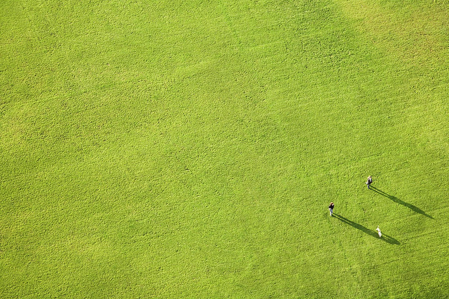 Aerial View Of Large Green Lawn, People Photograph by Gravity Images