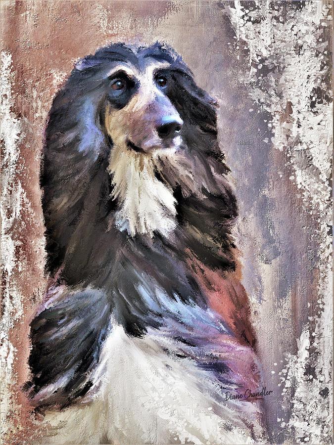 Afghan Hound Digital Art by Diane Chandler