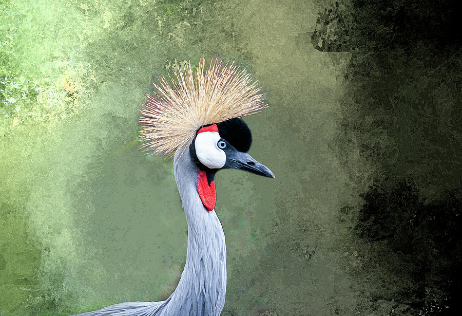 African Crowned Crane - Paintography by Anthony Jones