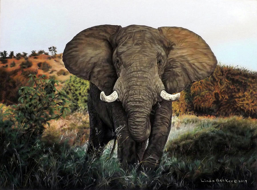 African Elephant by Linda Becker