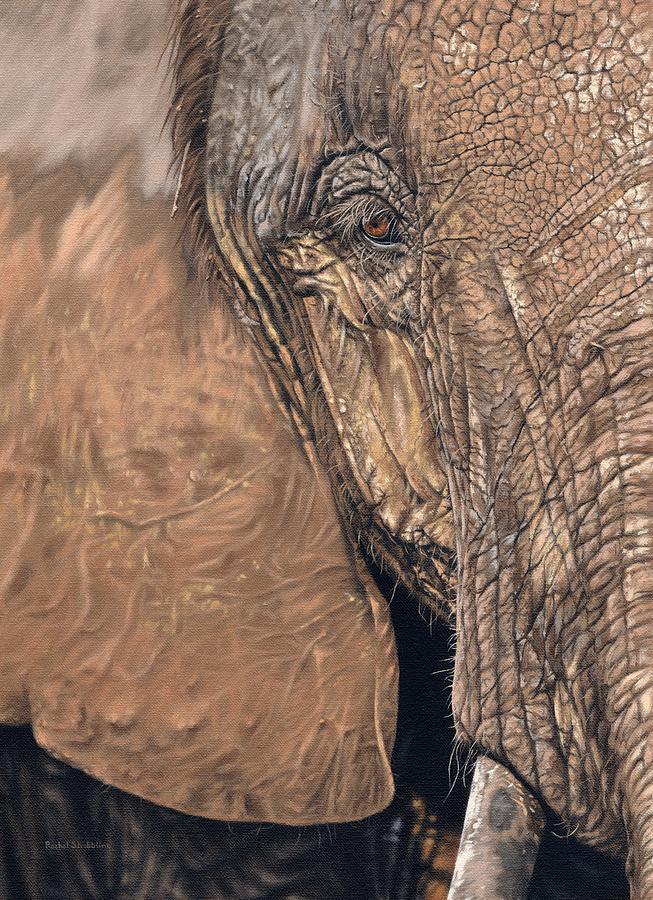 African Elephant by Rachel Stribbling