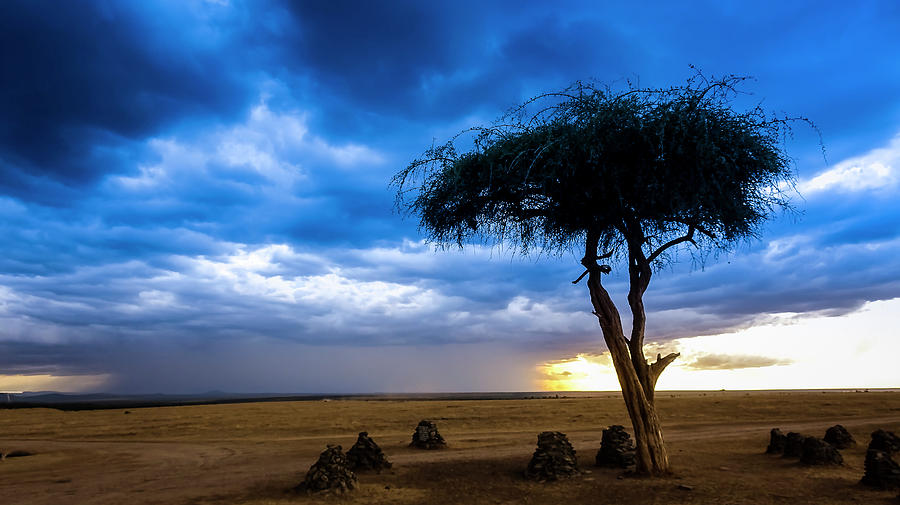 African Rains by Philip Rispin