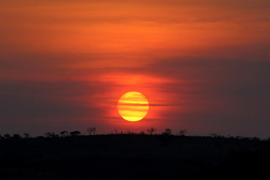 African Sunset by Fiona Kennard