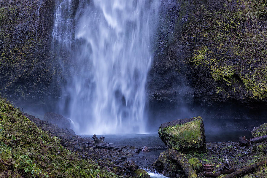 After the Fall by Belinda Greb