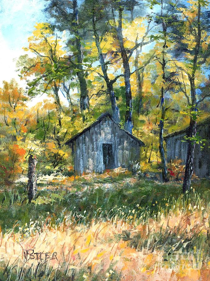 Afternoon Light by Virginia Potter