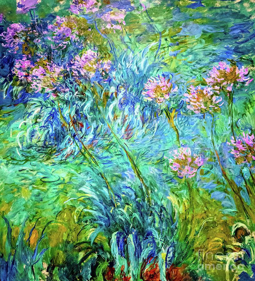Agapantus by Monet by Claude Monet