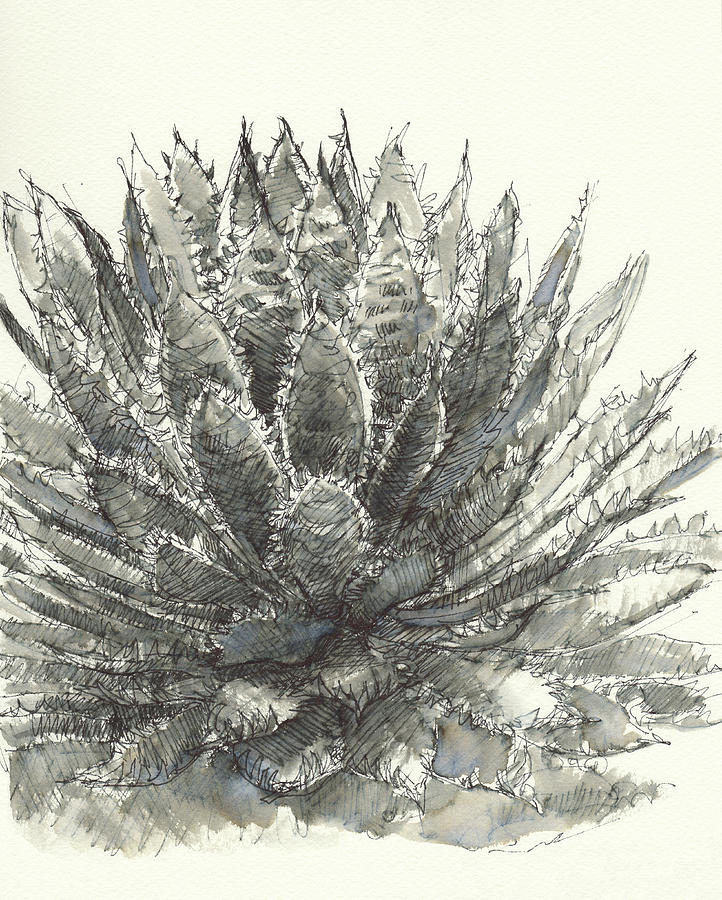 Agave Queen by Judith Kunzle
