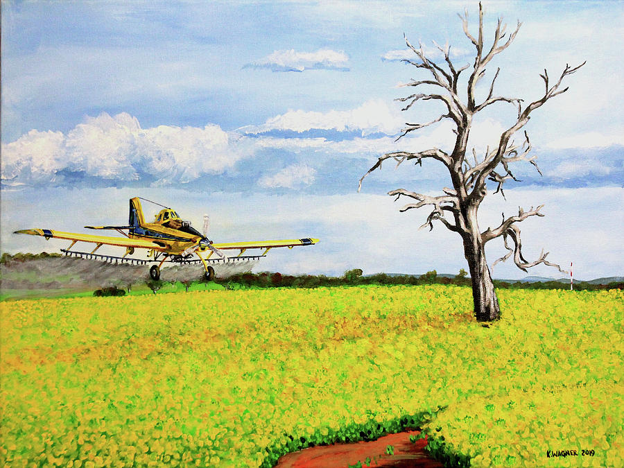 Air Tractor Spraying Canola Fields by Karl Wagner