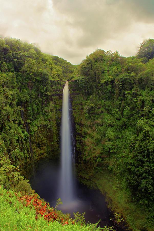 Akaka Falls - Hawaii Photograph by Photo By Mike Kline (notkalvin)