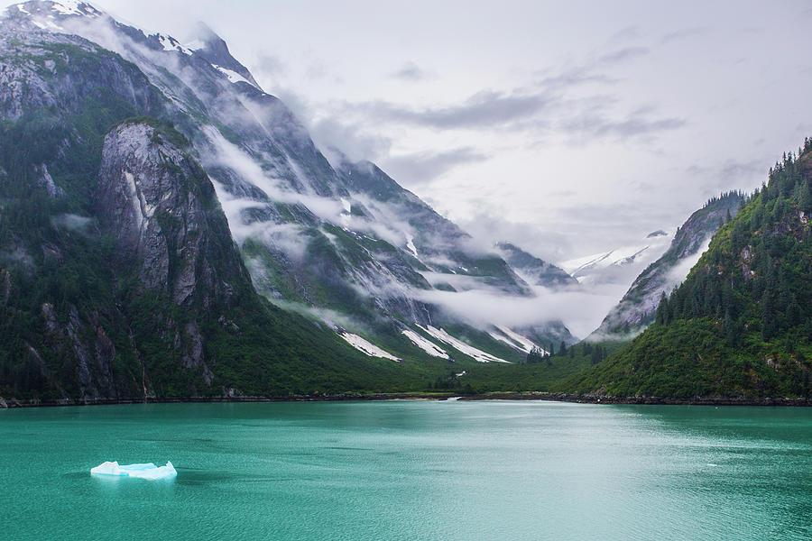 Alaska Beauty by Rochelle Berman