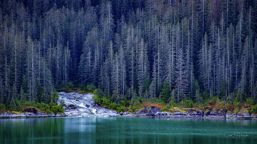 Alaskan Coastline Beauty by Carol Fox Henrichs