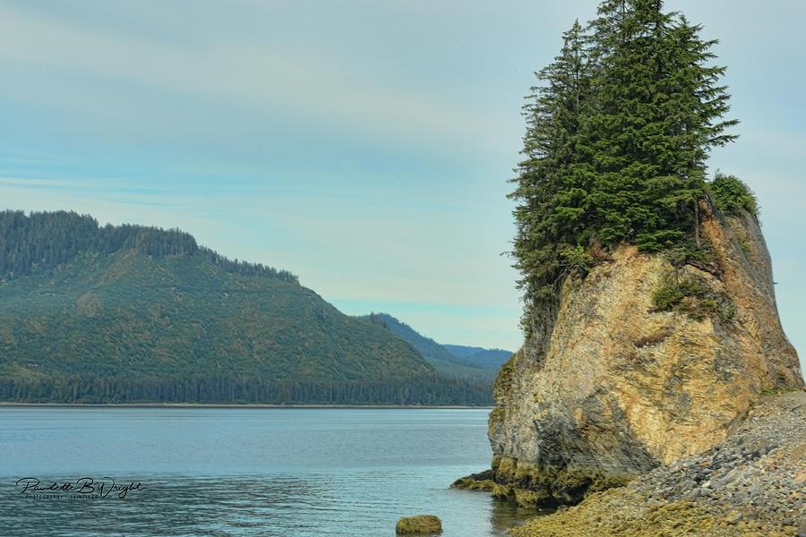 Alaskan Scenery Photograph